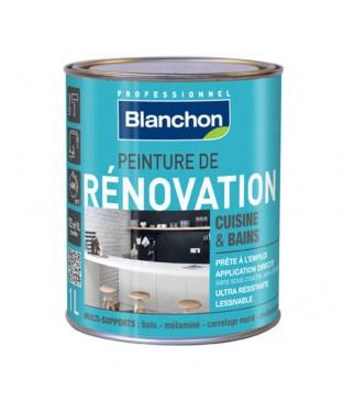 Peinture de Renovation Cuisine & Bains